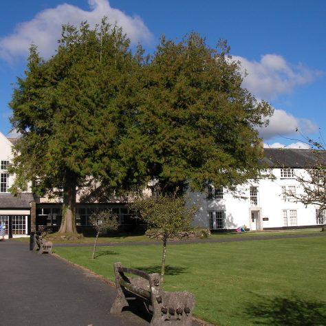 Shebbear College has Lake Chapel and Lake Farmhouse within its grounds | Maureen Ellis