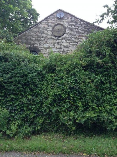 Radnor now hidden behind a hedge